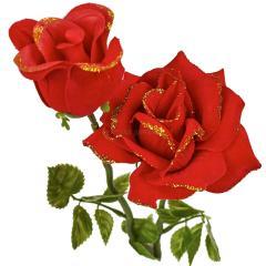 роза двойная