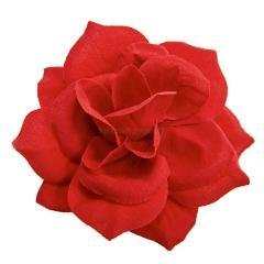 Голова розы Бархат