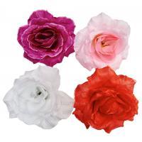 Голова розы Джина
